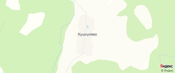 Карта деревни Кушкулево в Башкортостане с улицами и номерами домов