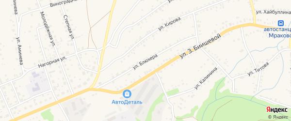 Улица Блюхера на карте села Мраково с номерами домов