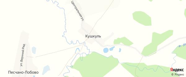 Карта деревни Кушкуля в Башкортостане с улицами и номерами домов