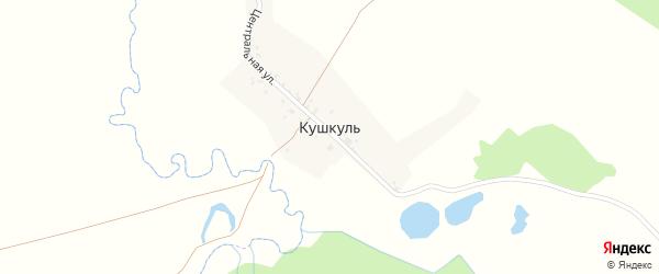 Центральная улица на карте деревни Кушкуля с номерами домов