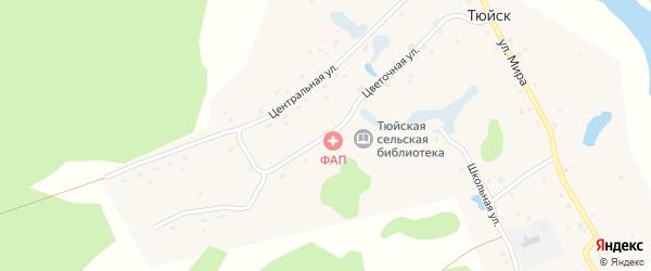 Цветочная улица на карте деревни Тюйска с номерами домов