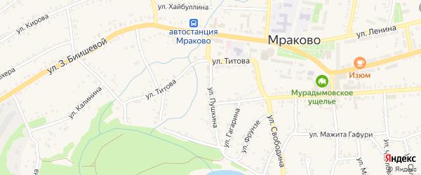 Улица Пушкина на карте села Мраково с номерами домов