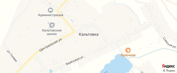Березовая улица на карте села Кальтовки с номерами домов