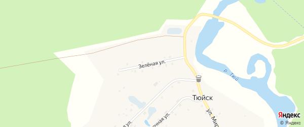 Зеленая улица на карте деревни Тюйска с номерами домов