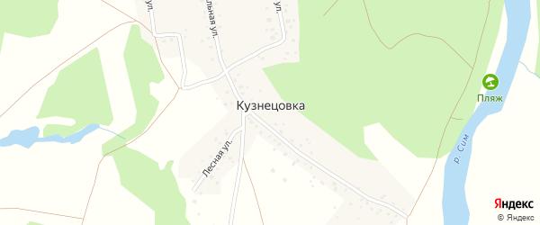 Центральная улица на карте деревни Кузнецовки с номерами домов