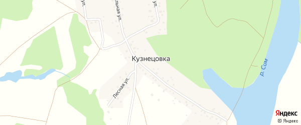 Лесная улица на карте деревни Кузнецовки с номерами домов