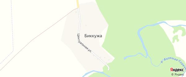 Центральная улица на карте деревни Биккужи с номерами домов
