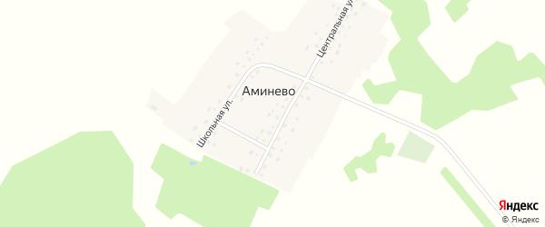 Центральная улица на карте деревни Аминево с номерами домов