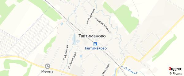 Карта села Тавтиманово в Башкортостане с улицами и номерами домов