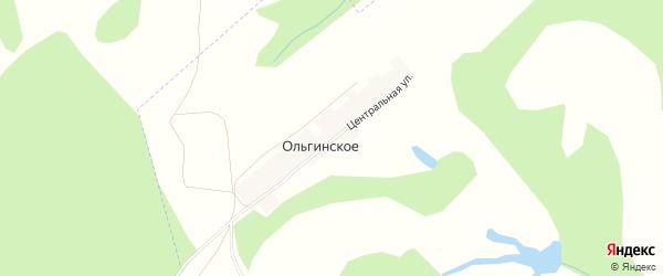 Карта деревни Ольгинского в Башкортостане с улицами и номерами домов