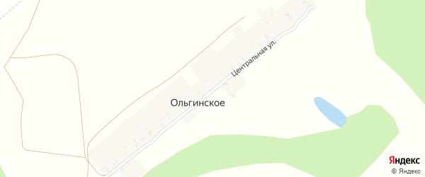 Центральная улица на карте деревни Ольгинского с номерами домов
