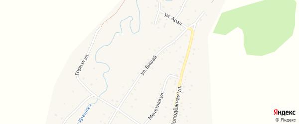 Улица Бишай на карте деревни Башкирской Ургинки с номерами домов
