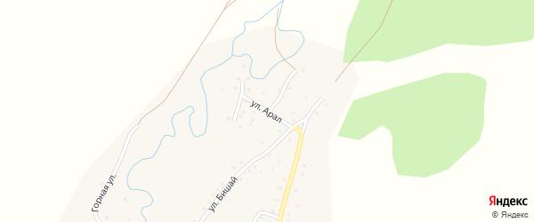 Улица Арал на карте деревни Башкирской Ургинки с номерами домов