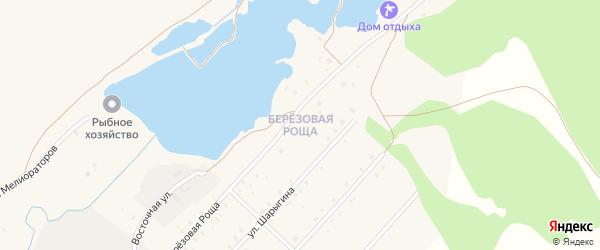 Улица Березовая Роща на карте села Мраково с номерами домов