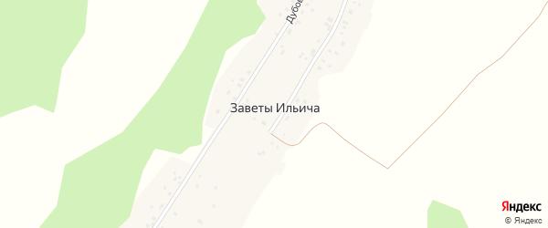 Нижняя улица на карте деревни Заветы Ильича с номерами домов