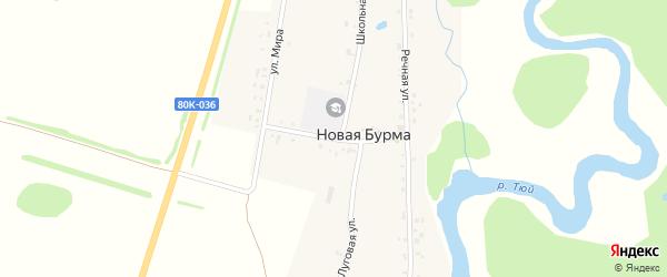 Советская улица на карте села Новой Бурмы с номерами домов