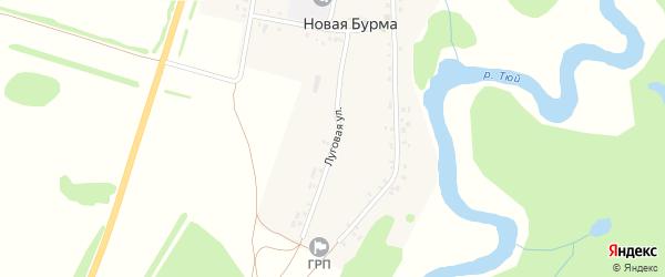 Луговая улица на карте села Новой Бурмы с номерами домов
