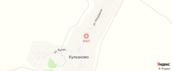 Улица Альдашля на карте деревни Кулканово с номерами домов
