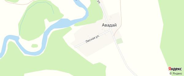 Лесная улица на карте деревни Авадая с номерами домов