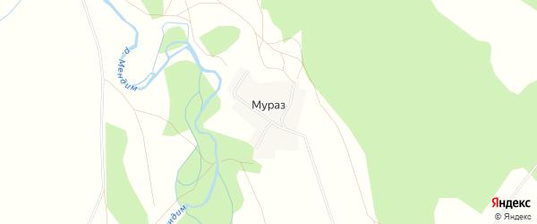 Карта деревни Мураза в Башкортостане с улицами и номерами домов