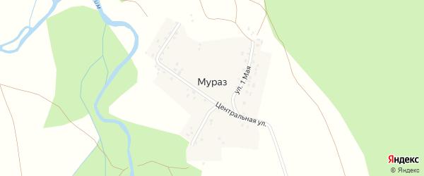 Центральная улица на карте деревни Мураза с номерами домов