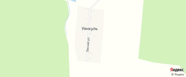Лесная улица на карте деревни Уянкуля с номерами домов