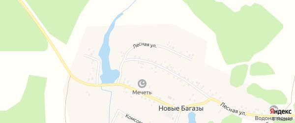Прудовая улица на карте деревни Новые Багазы с номерами домов