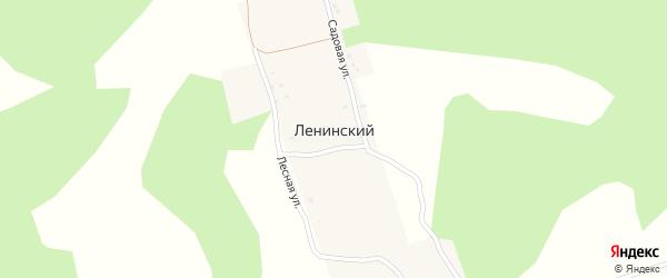 Лесная улица на карте деревни Ленинского с номерами домов