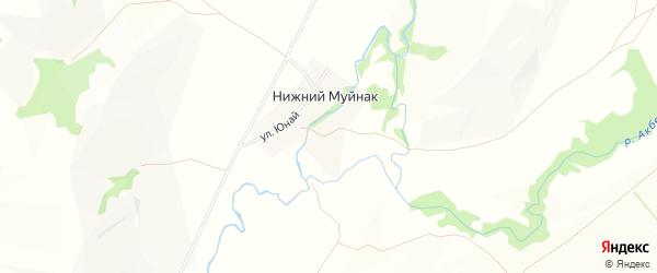 Карта деревни Нижнего Муйнака в Башкортостане с улицами и номерами домов