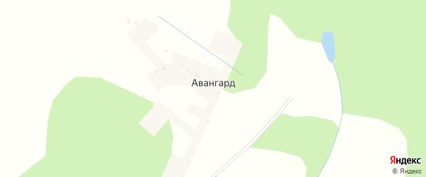 Полевая улица на карте деревни Авангарда с номерами домов