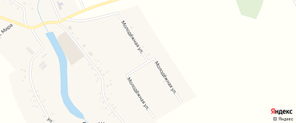 Молодежная улица на карте деревни Баш-Шиды с номерами домов