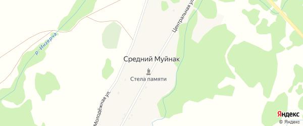 Центральная улица на карте деревни Среднего Муйнака с номерами домов