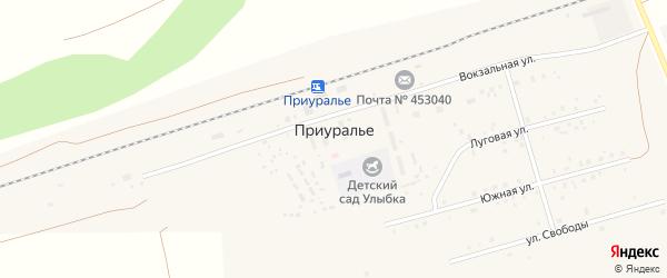 Луговая улица на карте деревни Приуралья с номерами домов