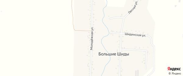 Молодежная улица на карте деревни Большие Шиды с номерами домов