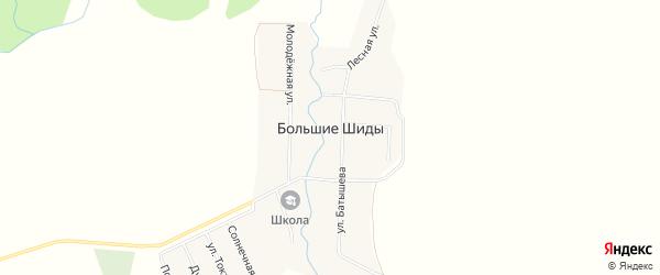 Карта деревни Большие Шиды в Башкортостане с улицами и номерами домов