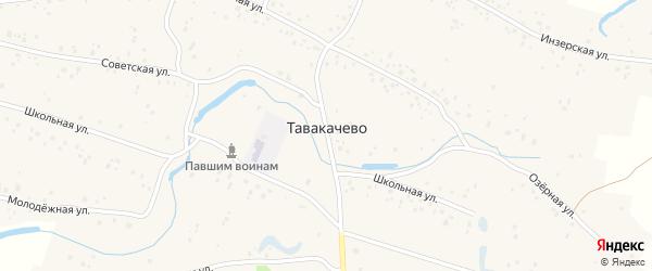 Центральная улица на карте деревни Тавакачево с номерами домов