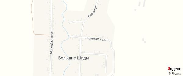 Шидинская улица на карте деревни Большие Шиды с номерами домов