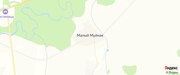 Карта деревни Малого Муйнака в Башкортостане с улицами и номерами домов