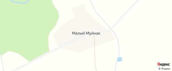 Центральная улица на карте деревни Малого Муйнака с номерами домов