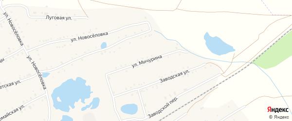 Улица Мичурина на карте села Кудеевского с номерами домов