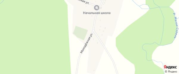Молодежная улица на карте деревни Верхней Бикберды с номерами домов