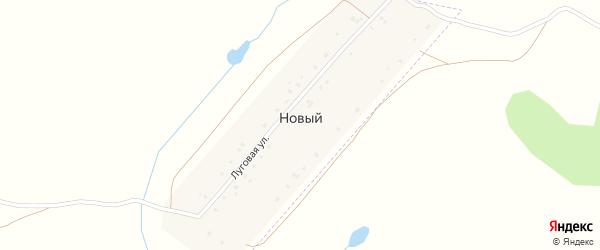 Луговая улица на карте деревни Нового с номерами домов