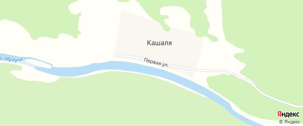 Первая улица на карте деревни Кашали с номерами домов