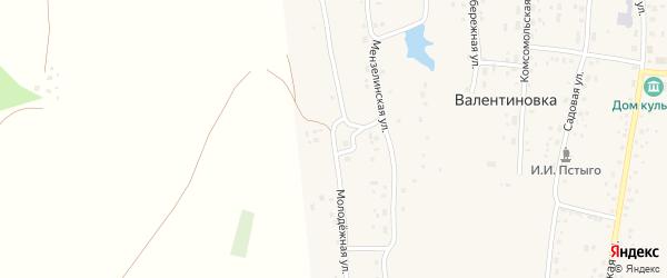Молодежная улица на карте села Валентиновки с номерами домов