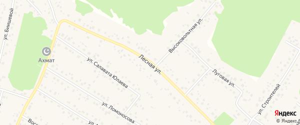 Лесная улица на карте села Караидели с номерами домов