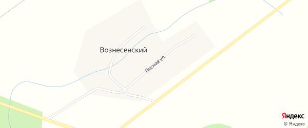 Лесная улица на карте деревни Вознесенского с номерами домов