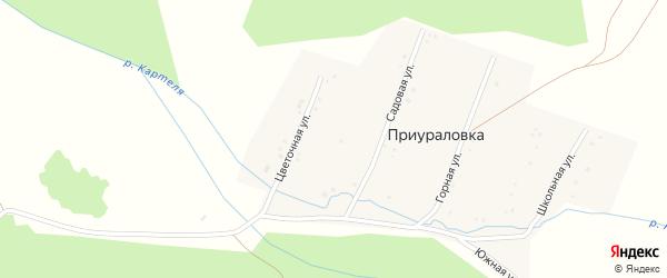 Цветочная улица на карте деревни Приураловки с номерами домов