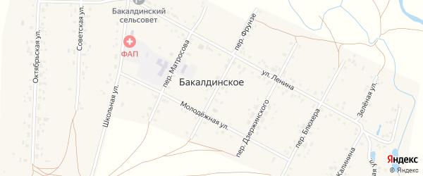 Переулок Дзержинского на карте Бакалдинского села с номерами домов