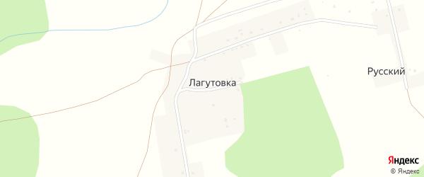 Цветочная улица на карте деревни Лагутовки с номерами домов