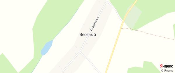 Садовая улица на карте деревни Веселого с номерами домов